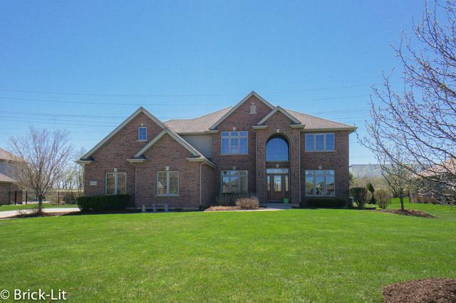 10563 Tuppence Court, Frankfort, IL 60423 (MLS #10374197) :: Berkshire Hathaway HomeServices Snyder Real Estate