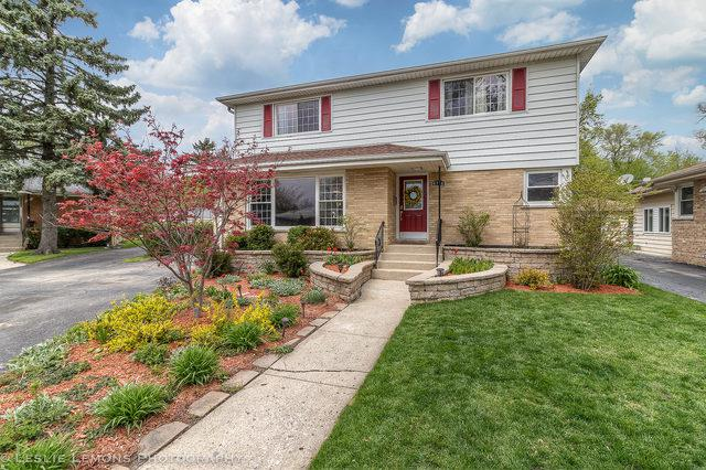 6716 Maple Street, Morton Grove, IL 60053 (MLS #10374688) :: Berkshire Hathaway HomeServices Snyder Real Estate