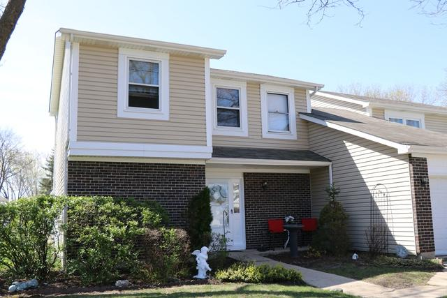 1069 Longboat Court, Schaumburg, IL 60194 (MLS #10374707) :: Berkshire Hathaway HomeServices Snyder Real Estate