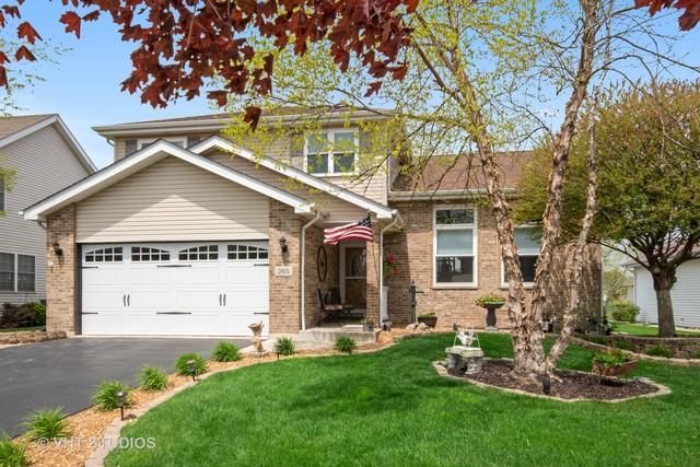 265 Mallards Cove, Beecher, IL 60401 (MLS #10374752) :: Property Consultants Realty