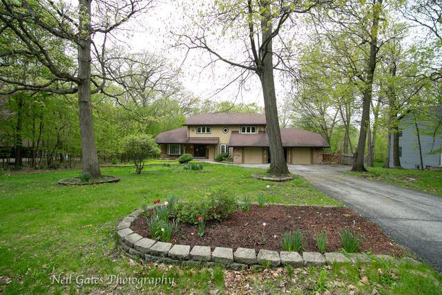 23840 S Plum Valley Drive, Crete, IL 60417 (MLS #10375358) :: Berkshire Hathaway HomeServices Snyder Real Estate