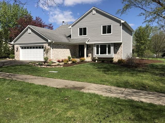 110 Arthur Avenue, Roselle, IL 60172 (MLS #10375363) :: Berkshire Hathaway HomeServices Snyder Real Estate