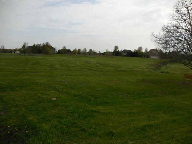 Lot 20 Brown Road, St. Charles, IL 60175 (MLS #10375595) :: Berkshire Hathaway HomeServices Snyder Real Estate