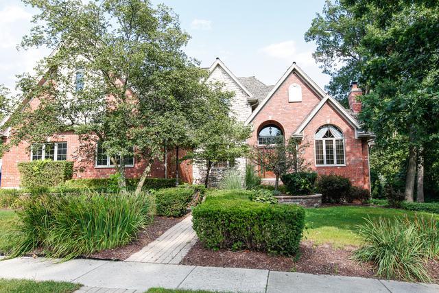 16125 Wildwood Lane, Homer Glen, IL 60491 (MLS #10375607) :: Berkshire Hathaway HomeServices Snyder Real Estate