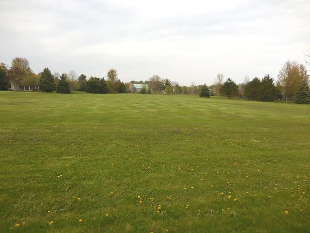 Lot 24 Campton Trail Road, St. Charles, IL 60175 (MLS #10375709) :: Berkshire Hathaway HomeServices Snyder Real Estate