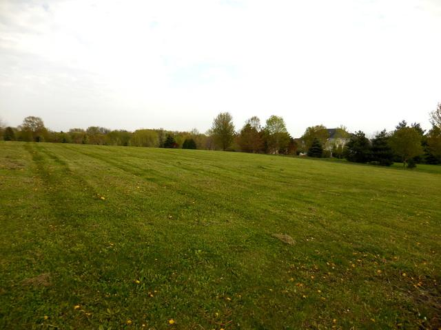 Lot 21 Campton Trail Road, St. Charles, IL 60175 (MLS #10375739) :: Berkshire Hathaway HomeServices Snyder Real Estate