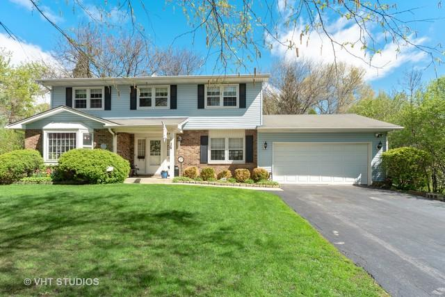 820 Freeman Road, Hoffman Estates, IL 60192 (MLS #10376613) :: The Jacobs Group