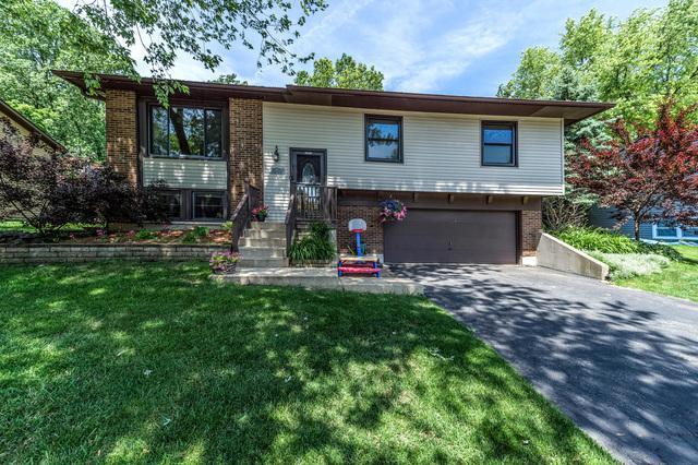 317 Malibu Drive, Bolingbrook, IL 60440 (MLS #10377499) :: Ryan Dallas Real Estate