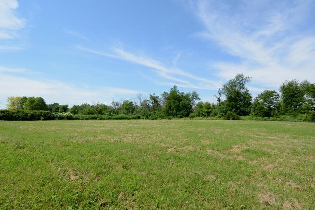 Lot 13 Nicholas Drive, Wayne, IL 60184 (MLS #10377770) :: Berkshire Hathaway HomeServices Snyder Real Estate