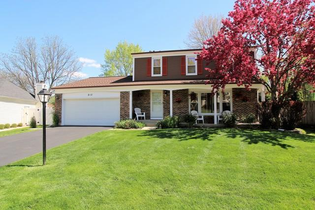 810 Brandywine Drive, Roselle, IL 60172 (MLS #10378182) :: Berkshire Hathaway HomeServices Snyder Real Estate