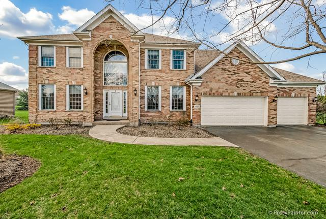 1407 Stag Trail, Cary, IL 60013 (MLS #10378252) :: Berkshire Hathaway HomeServices Snyder Real Estate