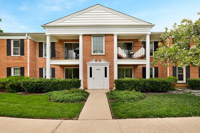 565 Shorely Drive #202, Barrington, IL 60010 (MLS #10378741) :: Ryan Dallas Real Estate