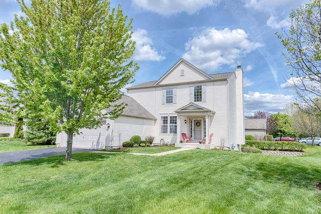 11630 Glenn Circle, Plainfield, IL 60585 (MLS #10378799) :: Berkshire Hathaway HomeServices Snyder Real Estate
