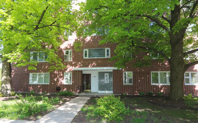 7200 Oak Avenue 1SW, River Forest, IL 60305 (MLS #10378899) :: Berkshire Hathaway HomeServices Snyder Real Estate