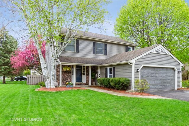 5321 W Shore Drive, Mchenry, IL 60050 (MLS #10378900) :: Ryan Dallas Real Estate