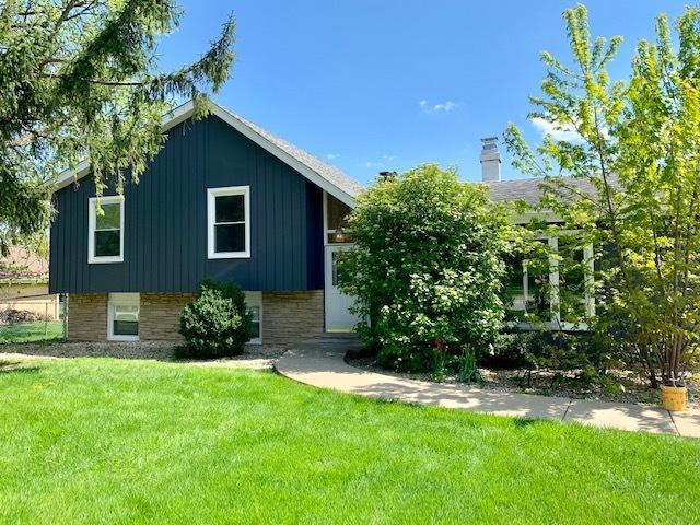 19 W Monterey Avenue, Schaumburg, IL 60193 (MLS #10379159) :: Berkshire Hathaway HomeServices Snyder Real Estate