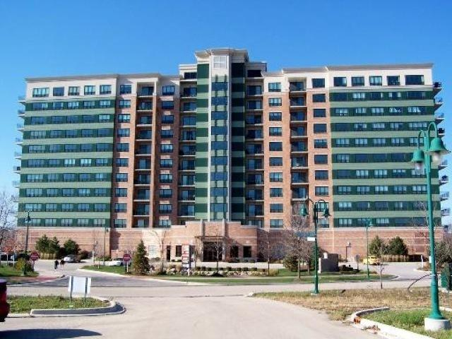 6420 Double Eagle Drive #913, Woodridge, IL 60517 (MLS #10379533) :: Property Consultants Realty