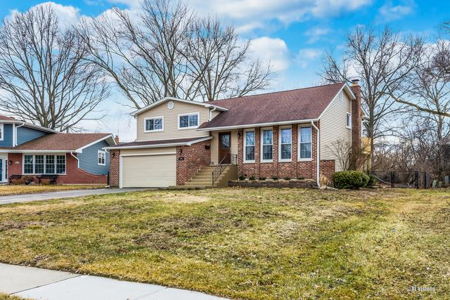 335 Bramble Court, Schaumburg, IL 60193 (MLS #10380362) :: Berkshire Hathaway HomeServices Snyder Real Estate
