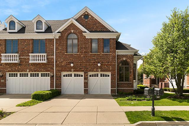 287 Arbor Glen Boulevard, Schaumburg, IL 60195 (MLS #10380742) :: Berkshire Hathaway HomeServices Snyder Real Estate
