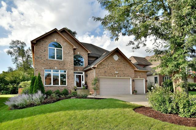 229 65th Street, Willowbrook, IL 60527 (MLS #10381120) :: Berkshire Hathaway HomeServices Snyder Real Estate
