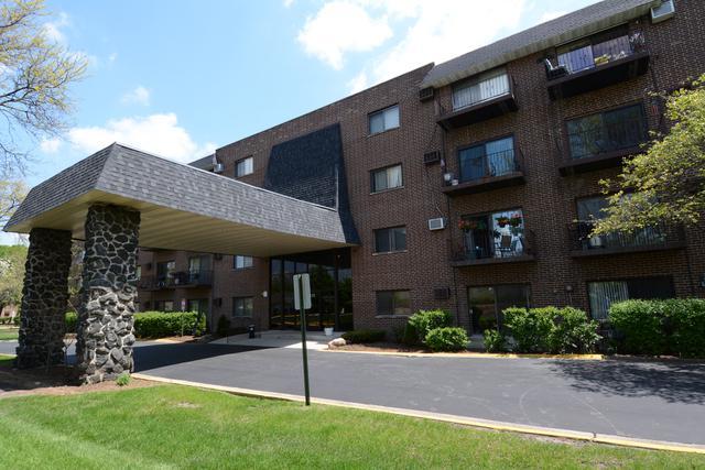 235 N Mill Road 109B, Addison, IL 60101 (MLS #10381835) :: Baz Realty Network | Keller Williams Elite