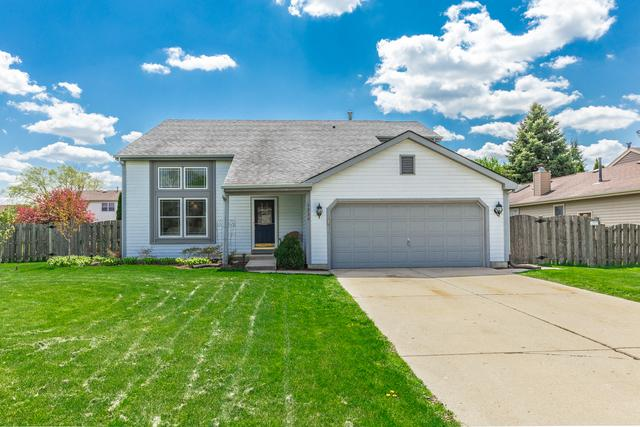 1229 Amberwood Drive, Crystal Lake, IL 60014 (MLS #10381915) :: Berkshire Hathaway HomeServices Snyder Real Estate