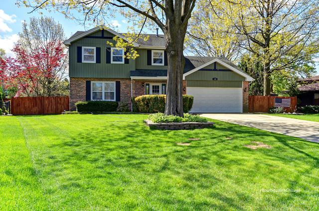 169 Brookwood Place, Wood Dale, IL 60191 (MLS #10382117) :: Century 21 Affiliated