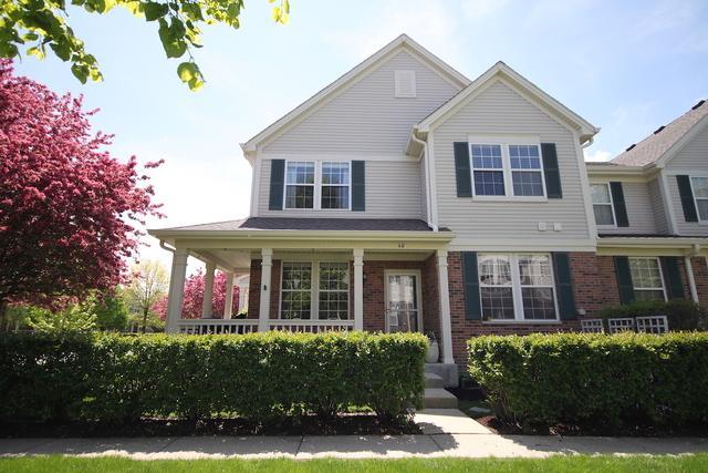 40 N Palazzo Drive, Addison, IL 60101 (MLS #10382977) :: Baz Realty Network | Keller Williams Elite