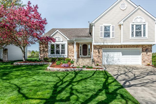 129 S Windham Lane, Bloomingdale, IL 60108 (MLS #10383006) :: Berkshire Hathaway HomeServices Snyder Real Estate