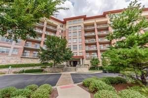 40 Prairie Park Drive #701, Wheeling, IL 60090 (MLS #10383196) :: Helen Oliveri Real Estate
