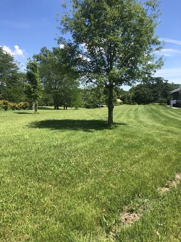 106 Sioux Court, Loda, IL 60948 (MLS #10383267) :: Ryan Dallas Real Estate