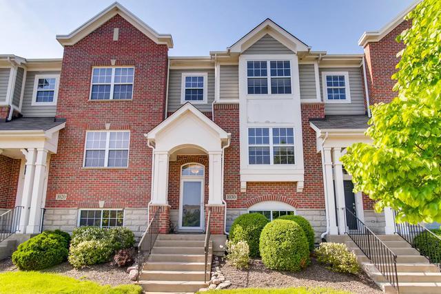 1030 Talcott Avenue #1030, Lemont, IL 60439 (MLS #10383510) :: Baz Realty Network | Keller Williams Elite
