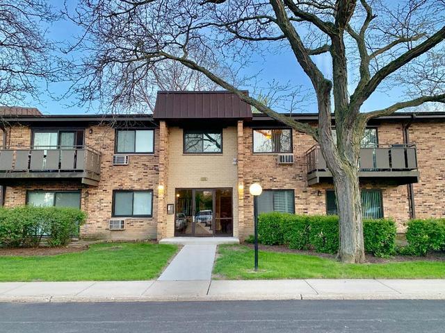 2640 N Windsor Drive #203, Arlington Heights, IL 60004 (MLS #10383589) :: Century 21 Affiliated