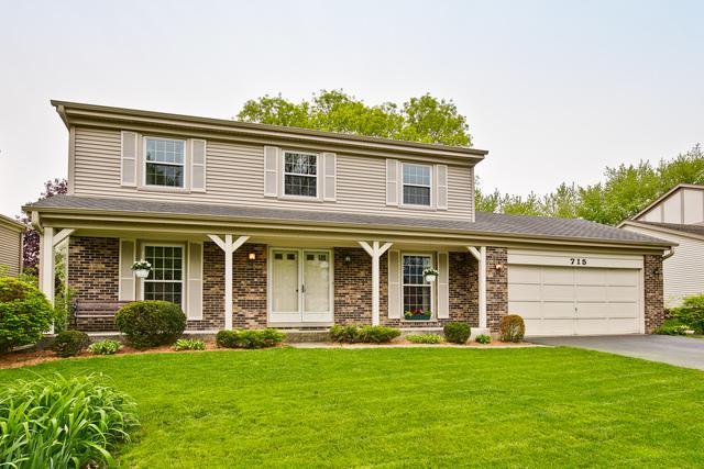 715 W Dorset Avenue, Palatine, IL 60067 (MLS #10383712) :: Berkshire Hathaway HomeServices Snyder Real Estate