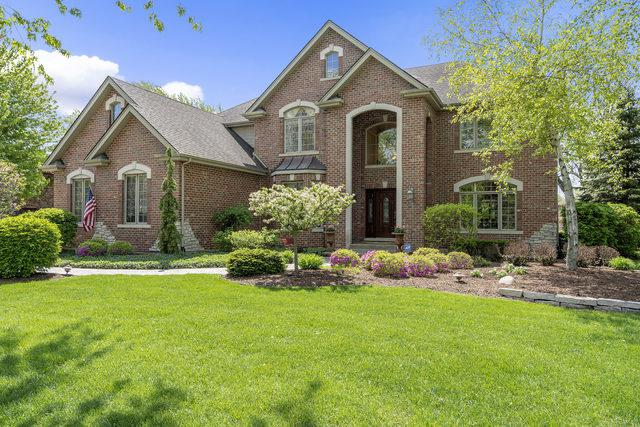 733 Millbrook Drive, Downers Grove, IL 60516 (MLS #10383714) :: The Mattz Mega Group
