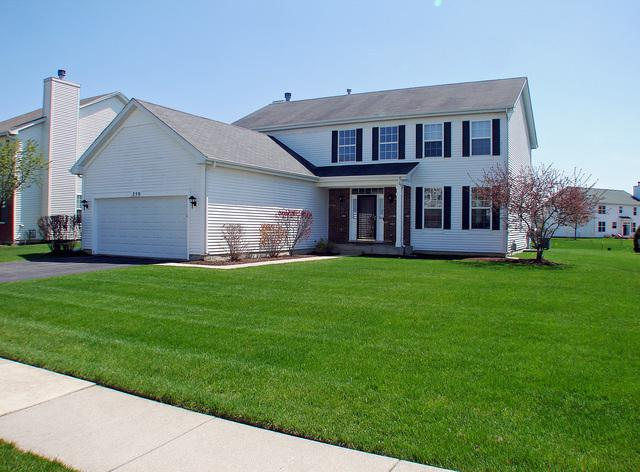 259 W Olmsted Lane, Round Lake, IL 60073 (MLS #10383729) :: Berkshire Hathaway HomeServices Snyder Real Estate
