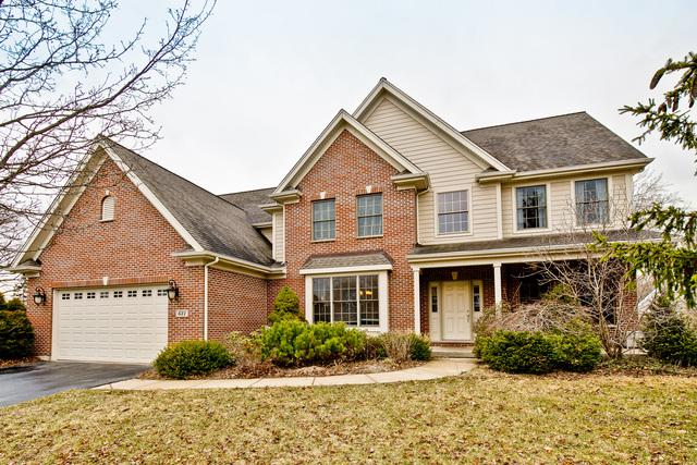 631 Estate Lane, Mundelein, IL 60060 (MLS #10383931) :: Helen Oliveri Real Estate