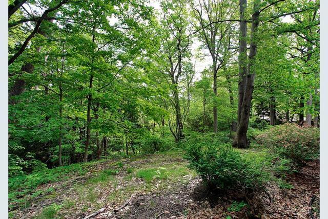 630 Pine Lane, Winnetka, IL 60093 (MLS #10384176) :: Berkshire Hathaway HomeServices Snyder Real Estate