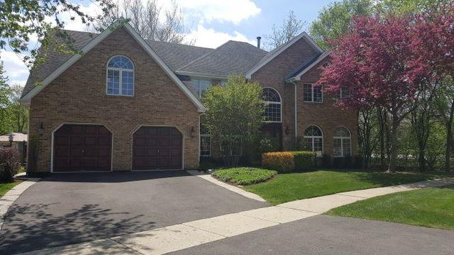 785 W Roanoke Court, Palatine, IL 60067 (MLS #10384239) :: Berkshire Hathaway HomeServices Snyder Real Estate