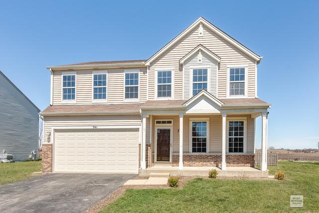 341 Aster Drive, Minooka, IL 60447 (MLS #10384464) :: Ryan Dallas Real Estate