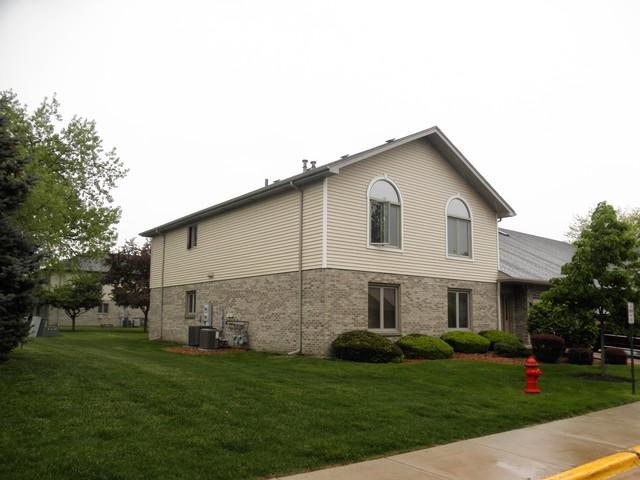 190 Saenz Lane #190, Joliet, IL 60436 (MLS #10384509) :: Lewke Partners