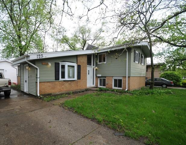 123 Westwood Drive, Park Forest, IL 60466 (MLS #10384551) :: Berkshire Hathaway HomeServices Snyder Real Estate