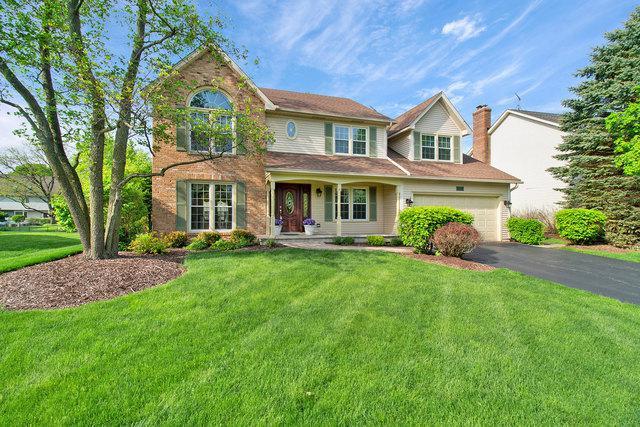 717 Arlington Avenue, Naperville, IL 60565 (MLS #10384580) :: Berkshire Hathaway HomeServices Snyder Real Estate