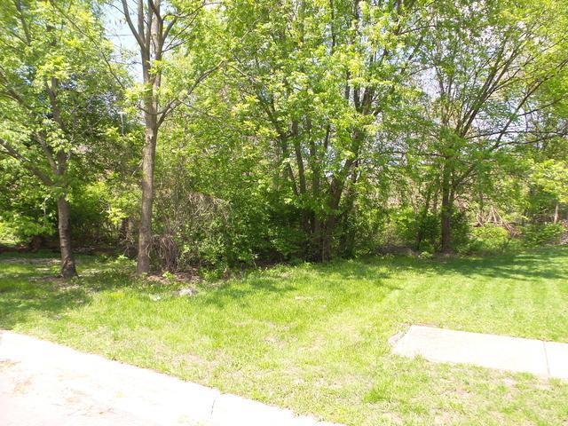 1215 Ada Street, Joliet, IL 60432 (MLS #10384789) :: Lewke Partners