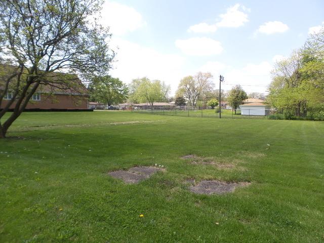 1509 Arthur Avenue, Joliet, IL 60432 (MLS #10384798) :: Lewke Partners