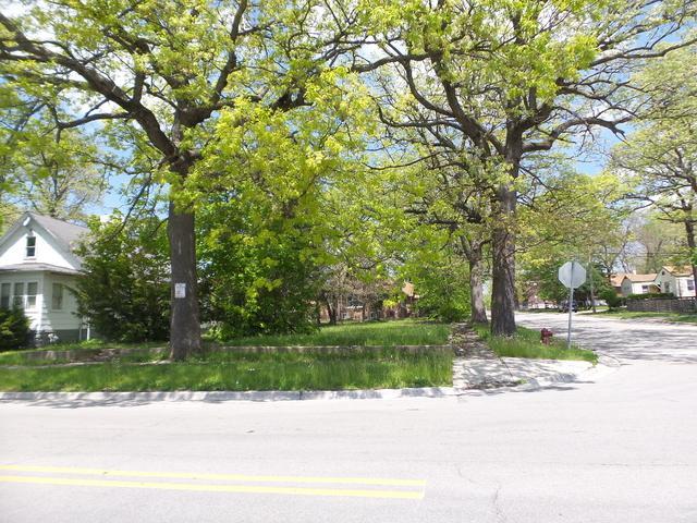 1027 Woodruff Road, Joliet, IL 60432 (MLS #10384804) :: Lewke Partners