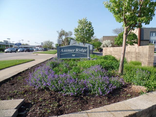 2001 Ammer Ridge Court #102, Glenview, IL 60025 (MLS #10385129) :: Helen Oliveri Real Estate