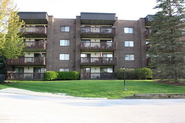 650 Whitney Court #207, Gurnee, IL 60031 (MLS #10385135) :: Lewke Partners