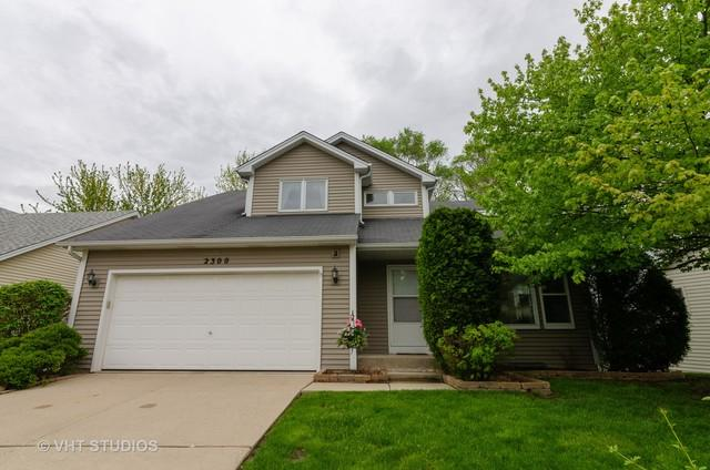 2300 Horned Owl Court, Elgin, IL 60123 (MLS #10385222) :: Lewke Partners