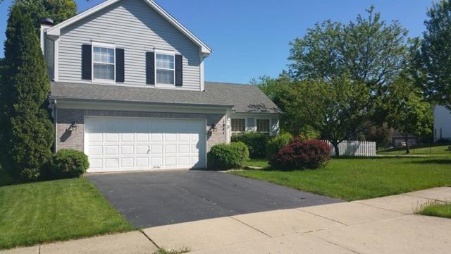 1041 Clover Hill Lane, Elgin, IL 60120 (MLS #10385287) :: Lewke Partners